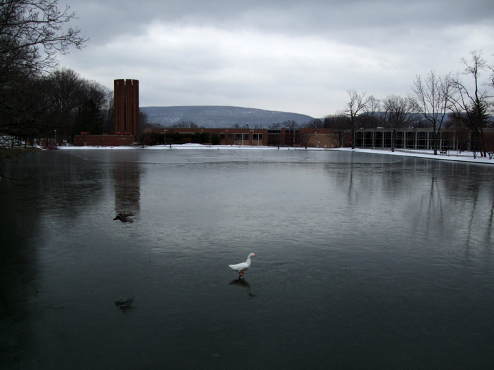 Penn State Altoona Campus by Jay Bryant