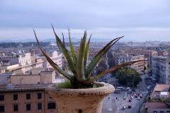 Rome_Album_01
